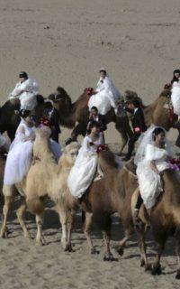 Украинские невесты для азиатских холостяков